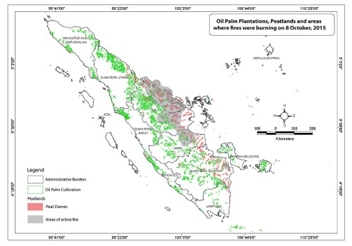 hotspots on peatlands